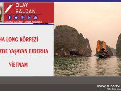Vietnam Ha Long Körfezi