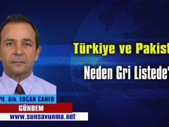 Türkiye ve Pakistan Neden Gri Listede?